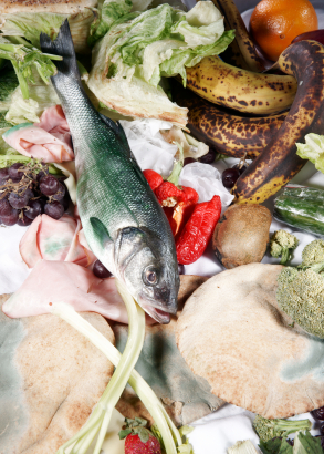 Food Waste is Just Plain Ugly